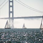 Sails Against the Fog by Martha Sherman