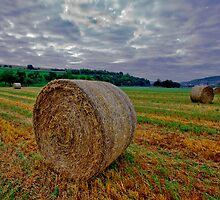Hay Bails at Sunrise by photosbyflood