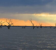 Sunset, Lake Pammamaroo, Outback, NSW, Menindee by Collymack