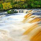 Aysgarth Falls by Stephen Knowles