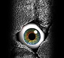 The walls have eyes iPhone 4/4S case v2 by Steve Crompton