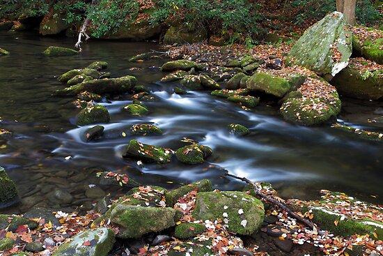 Twentymile Creek  by Gary L   Suddath