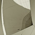 Spinnaker by benjy