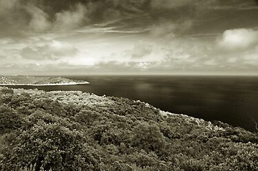 Island of Port Cros, France by benjy