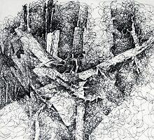 Fallen Trees 2 by Peter Baglia