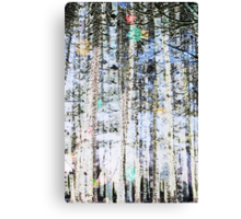 Light Up The Trees Canvas Print