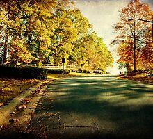 Autumn Road by Jonicool