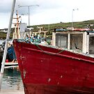 boats of ireland 1 by Leah Gay