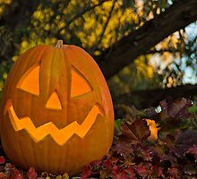 Happy Halloween from Corrales, New Mexico by Mitchell Tillison
