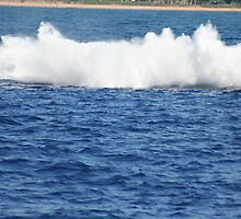 Humpback Breaching - 3 of 3 by Katie Grove-Velasquez