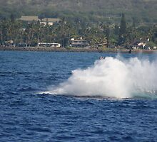 Humpback Breach 3 of 3 by Katie Grove-Velasquez
