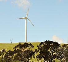 Wind Farm Carcoar NSW by julie anne  grattan