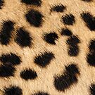 Cheetah hide - big pattern by KRDesign