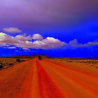 Long Red & Orange road on the Bolivian altiplano by Camila Gelber