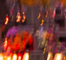 "All Souls' Day - multicolor floral waterfalls  . Kraków . "" Photo-Secession  - Gallery 291 "" . by  Brown Sugar . Views (42) thx! by AndGoszcz"
