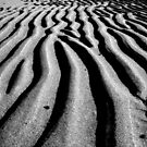 Rippled Sand B&W by beavo