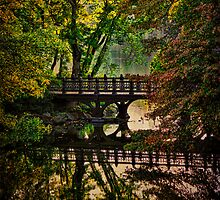 Oak Bridge, Central Park by Chris Lord