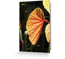 Leaves...the plant´s lungs Greeting Card