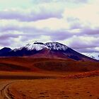 The Andes mountains in Bolivia by Camila Gelber