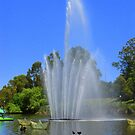 The River Torrens  by bobby1