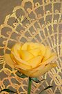 With Thanks Card  - Yellow Rose On Lace Background  by Sandra Foster