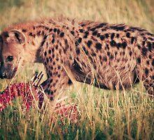 Hyena Lunch by Jill Fisher