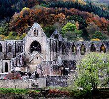 Autumn At Tintern Abbey  by Samantha Higgs