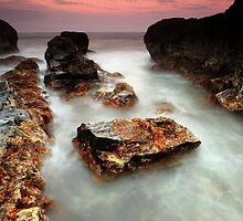 Low Tide Garden by Garth Smith