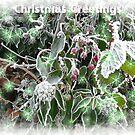 Winters cloak by karenlynda