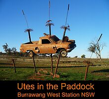 Utes in the paddock - cover by DashTravels