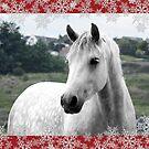 Connemara Pony Christmas Card - Type 3 by ConnemaraPony