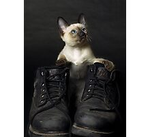 These Boots are Made for Scratchin' Photographic Print