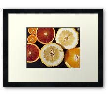 Citrus sp. Framed Print