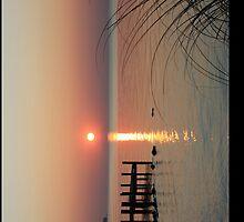 Sunrise Oriental, NC by D R Moore