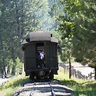 Pine Caboose - SVRR by © Betty E Duncan ~ Blue Mountain Blessings Photography