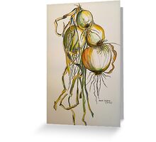 Drying onions. Tuscany. Greeting Card
