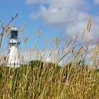 A Maine Lighthouse by mattnnat