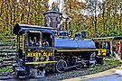Henry Clay Steam Train by djphoto