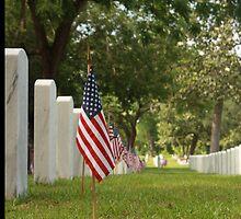 Memorial by D R Moore