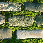 Cobbles and Moss by Yonmei