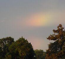 Tiny Rainbow by WildestArt