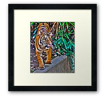 Is it time for lunch? Framed Print