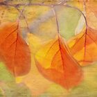autumn glory by Teresa Pople