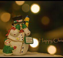 No peeking till Christmas by Stephen Knowles