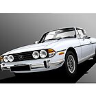 Triumph Stag Illustration by Autographics