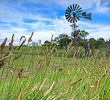 The Old Windmill - Near Toowoomba SE Qld Australia by Beth  Wode