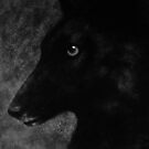 The Black Wolf I by Leny L.