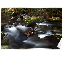 Soothing Waters Poster
