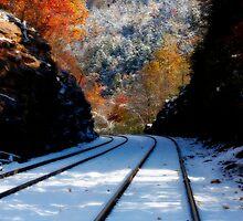 Railroad by KerrieLynnPhoto