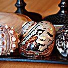 Shells and Candlesticks by littlelin